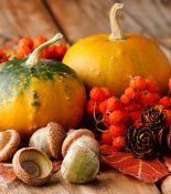 The Noble Gourd: Pumpkin Recipes
