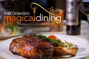 Magical Dinning month