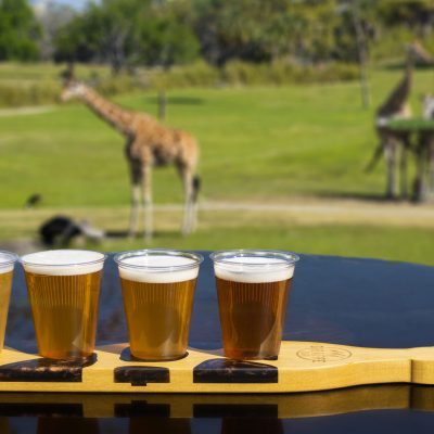 Bush Gardens Giraffe Bar is opening!