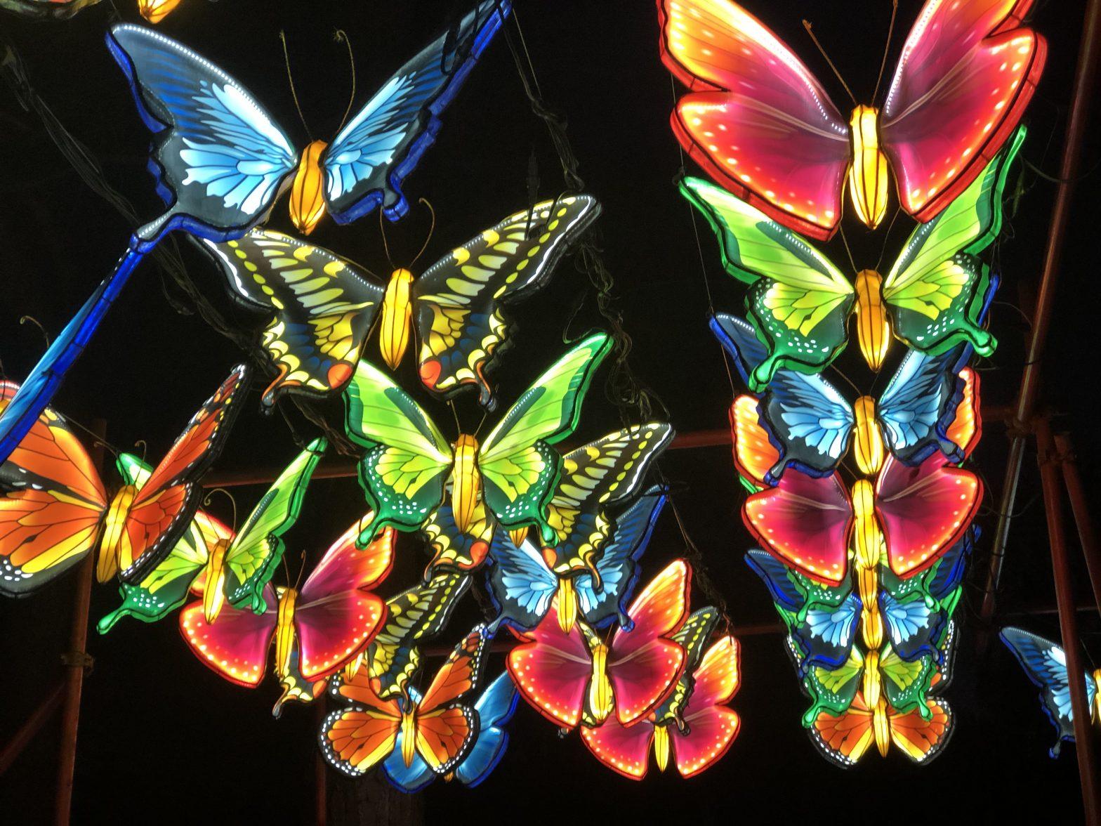 Florida's Asian lantern festival 2021